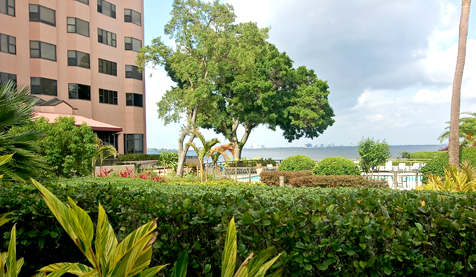 Tampa Bay Retirement Living: 55+ Homes, Condos, Apartments